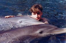 swim with dolphins 1